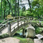 Ładny ,a także uporządkowany ogród to zasługa wielu godzin spędzonych  w jego zaciszu podczas pielegnacji.